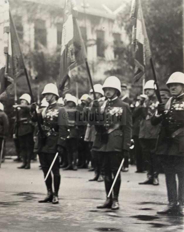 Cérémonie Général Billotte détail drapeaux